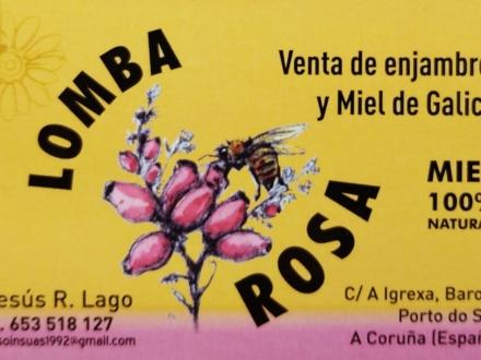 Apicola Lomba Rosa